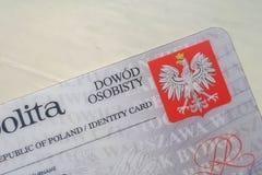 Польское удостоверение личности на белой предпосылке стоковое фото rf