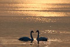 полюбите заход солнца s Стоковая Фотография RF