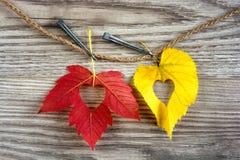 Полюбите сердца на цветастых листьях осени с деревянной предпосылкой Стоковое Изображение RF