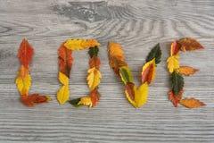 Полюбите сердца на цветастых листьях осени с деревянной предпосылкой Стоковая Фотография RF