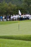 полюс зеленого цвета ngc2009 флага шарика Стоковая Фотография RF