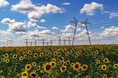 Поляки электричества наивысшей мощности в городской местности Энергоснабжение, распределение энергии, передавая энергии, передачи стоковые изображения