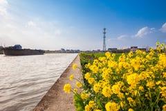 Поля в сельской местности южного Китая Стоковые Фото
