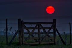 Поля захода солнца и выгона ландшафта в Аргентине стоковые изображения rf