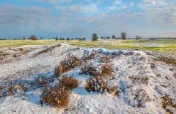 Поля зимы в снеге Зима Пшеница стоковое изображение rf