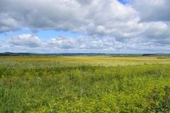 Поля предгорья гор Bashkir Ural Стоковые Изображения RF