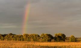 Поля радуги Стоковое фото RF