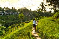 Поля риса и турист Ubud фотографа, Бали, Индонезия стоковая фотография