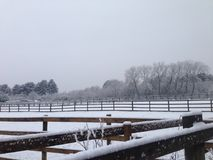 Поля снежка Стоковое Изображение