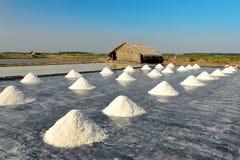 Поля соли Стоковая Фотография RF
