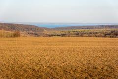 Поля с сухой желтой и свежей зеленой травой Сравнивая переход подчеркивает свежая зеленая трава Лес, поля, луга, стоковые изображения