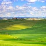 Поля Тосканы, Креты Senesi зеленые и Rolling Hills landscape, Италия. Стоковые Фотографии RF