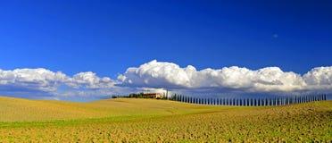 Поля Тосканы Стоковая Фотография RF