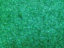 Поля травы Стоковая Фотография