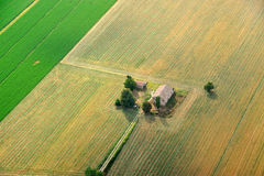 поля фермы засевают старая пшеница травой Стоковые Изображения