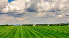 Поля фермы, сельский ландшафт Стоковые Фотографии RF