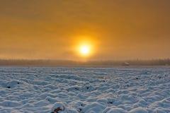 Поля Snowy в восходе солнца зимы Стоковая Фотография