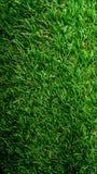 Пол зеленой травы Внешний пол дома Стоковые Изображения