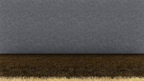 Пол и бетонная стена сухой травы стоковое фото rf