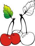 помадка вишни Стоковые Изображения RF