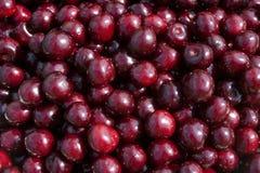 помадка вишни Стоковое Фото