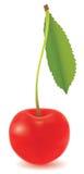 помадка вишни Стоковая Фотография