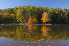 помадка озера стрелки Стоковая Фотография