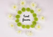 Помадка ` слова цветет ` Стоковые Фотографии RF