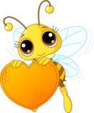 помадка удерживания сердца пчелы милая Стоковые Фотографии RF