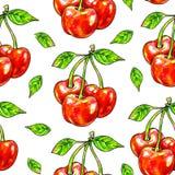 Помадка вишни на белой предпосылке Безшовная картина для конструкции Иллюстрации анимации Ручная работа Стоковое Фото