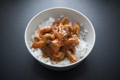 помадка риса цыпленка кислая Стоковое Изображение RF