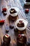 Помадки шоколада с высушенными ягодами и фасолями шоколада Стоковое фото RF
