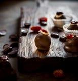 Помадки шоколада с высушенными ягодами и фасолями шоколада Стоковая Фотография