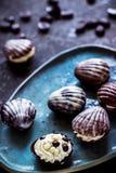 Помадки шоколада с высушенными ягодами и фасолями шоколада Стоковое Изображение