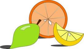 Помеец и лимоны Стоковые Изображения RF