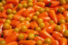 помеец колокола предпосылки перчит желтый цвет томатов Стоковое фото RF