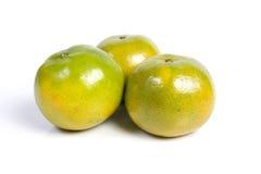 помеец мандарина Стоковая Фотография