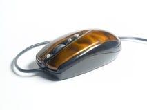 помеец мыши Стоковое Фото