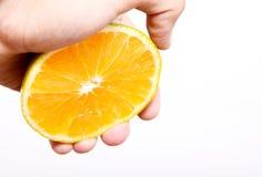 помеец плодоовощ Стоковое Изображение RF
