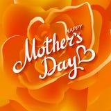 помеец поднял Счастливый апельсин Роза дня матерей красивый зацветая цветет Вектор EPS 10 Стоковые Изображения RF