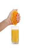 помеец руки обжатия Стоковое Изображение RF