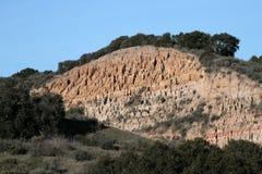 помеец скалы Стоковая Фотография RF