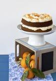 помеец торта Стоковое фото RF