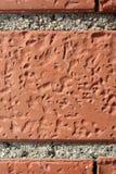 Померанцовая кирпичная стена Стоковые Изображения