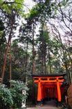померанцовое torii s Стоковая Фотография