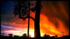 померанцовые небеса стоковое фото rf