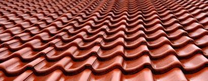 померанцовые плитки крыши влажные Стоковая Фотография RF