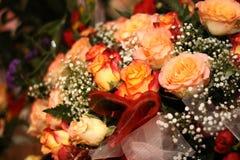 померанцовые розы стоковое изображение rf