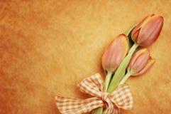 Померанцовые тюльпаны пасхи Стоковые Изображения RF