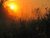 померанцовый восход солнца Стоковая Фотография RF